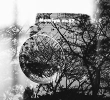 Camera and trees double exposure by Jessica  Lia