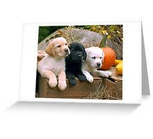 When does the show start? Greeting Card