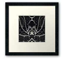 Golden Spiderweb Framed Print