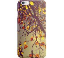 One Fine Day iPhone Case/Skin