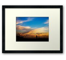 Lamp-flowers field Framed Print