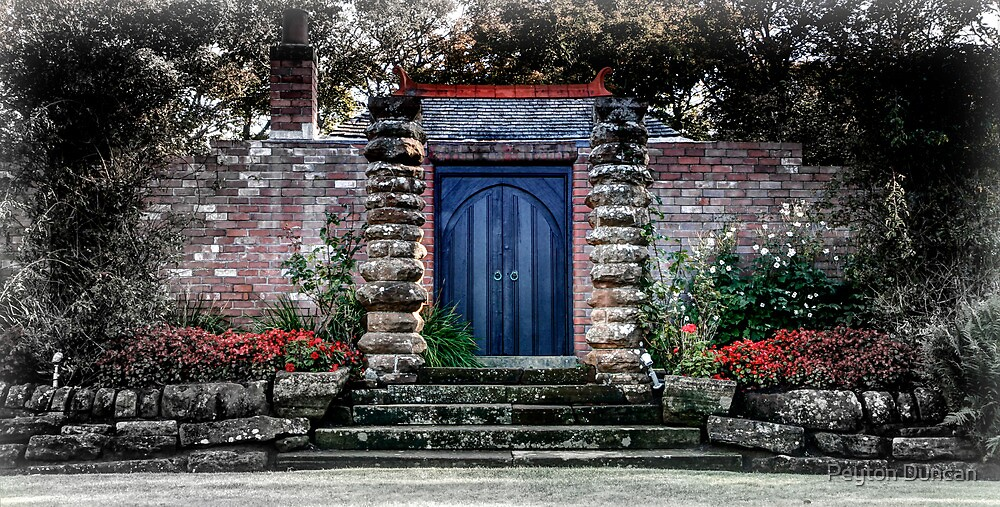 A garden in Troon by Peyton Duncan