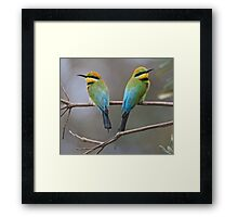 Looking Out For each Other. Framed Print