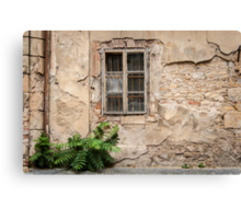 Praha: The Old Wall Canvas Print