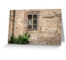 Praha: The Old Wall Greeting Card