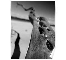 Driftwood Pot Boil Point Poster