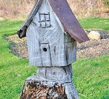 Stump house by Penny Rinker