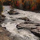 Canadian Autumn Landscape by Joanne  Bradley