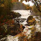 Plaisance Waterfalls by Joanne  Bradley