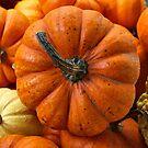 Pumpkin Time. by Lee d'Entremont