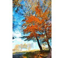 Red birch Photographic Print
