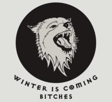 Winter is Coming Bitches T-Shirt