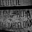 Barcelona by Ann Evans