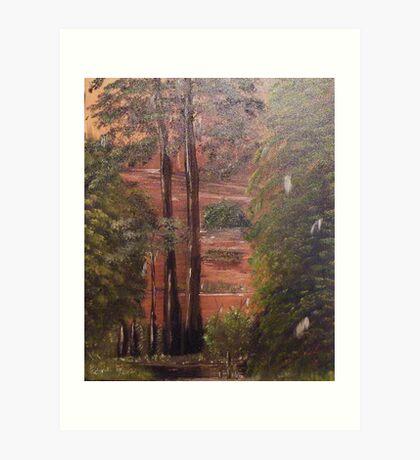 Cypress Trees Knees and Spanish Moss Art Print
