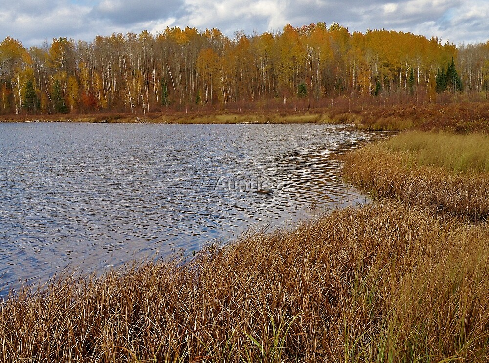 Upson Lake by AuntieJ