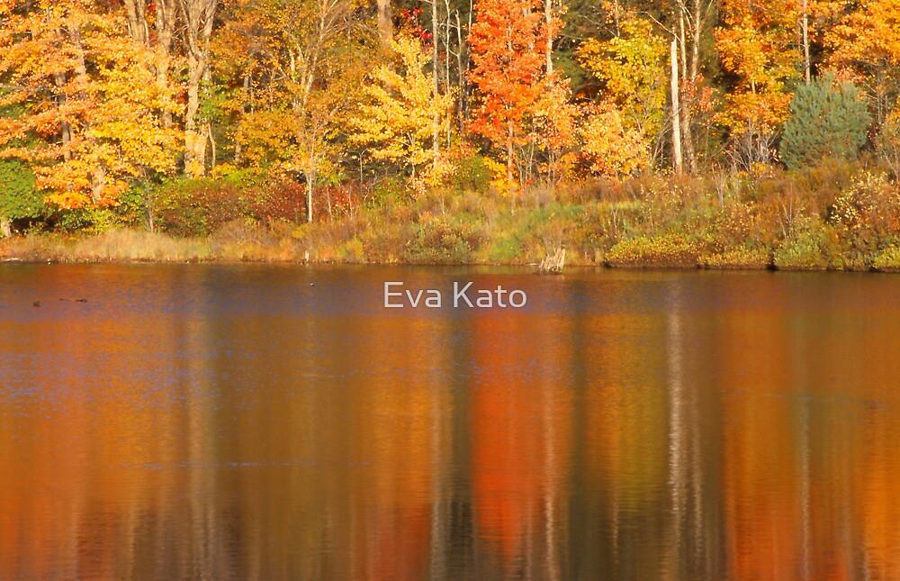Muskoka Reflections in Fall by Eva Kato