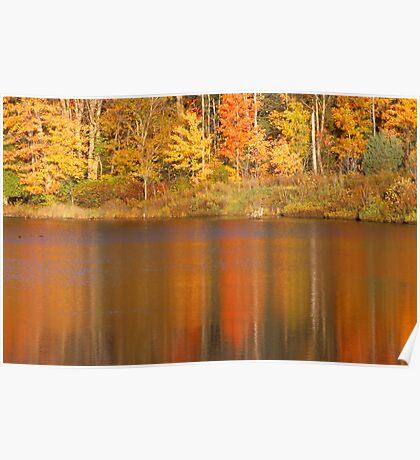 Muskoka Reflections in Fall Poster