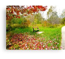 Sunday leaves Canvas Print