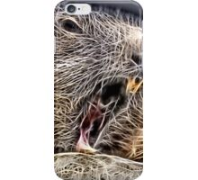 Wild nature - whistler iPhone Case/Skin