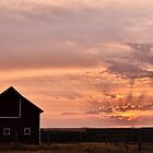 Ranch Sunset by Steph Peesker