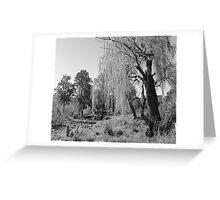 Black & White Willow Greeting Card