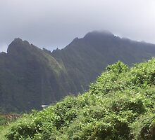 On The Road To Kaneohe I, Hawaii by Richard J. Bartlett