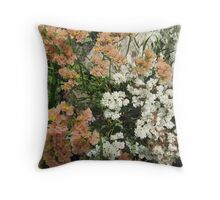 Different shades of 'Statice'_limonium_  in the garden bed, Arilka. S.A. Throw Pillow