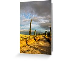 Country road, Tuscany Greeting Card