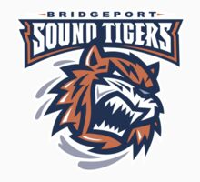 Sound Tigers Hockey by sarmay729