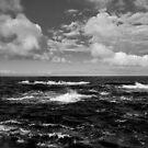 Wind by Jari Hudd
