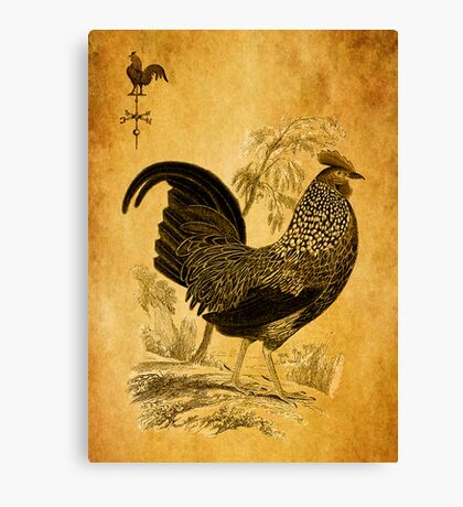 Thanksgiving Rooster Canvas Print