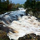 Low Force - River's bend by Harry Purves
