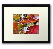 Pleasant Rainy Day Framed Print