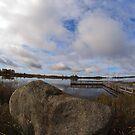 Dollarville, MI Dock by bradydhebert