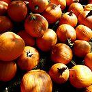 Pumpkins Everywhere! by Amy Herrfurth