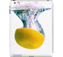 Grapefruit Back Splash iPad Case/Skin