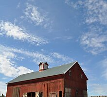Red Barn - Spokane, WA by CADavis