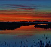 Assateague Bayside Sunset by BeachBumPics