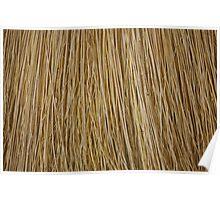 Macro of a broom. Poster