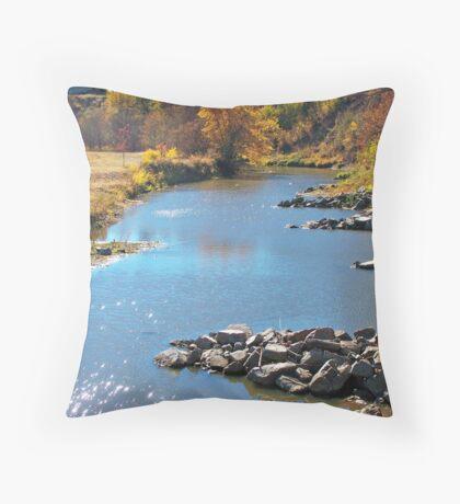 Autumn at Skunk Creek Throw Pillow