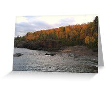 Fall Colors 2 Greeting Card