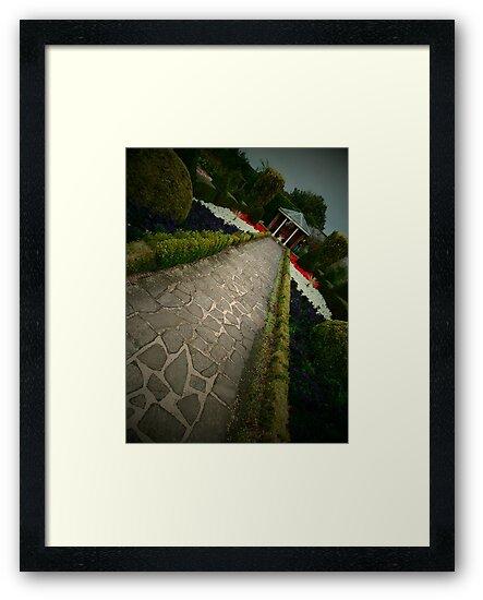 Long walk by Robert  Taylor