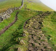 The Ascent - Pen-y-ghent by Rhys Herbert