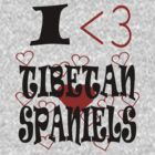 I <3 Tibetan Spaniels by veganese