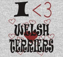 I <3 Welsh Terriers Kids Clothes
