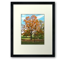 Fall 2012 Collection 10 Framed Print