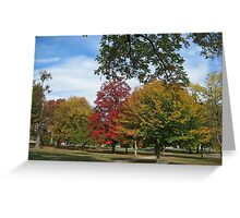 Fall 2012 Collection 24 Greeting Card
