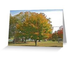 Fall 2012 Collection 27 Greeting Card