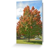 Fall 2012 Collection 31 Greeting Card