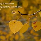 Aspen Leaves with Quote by Jeri Stunkard